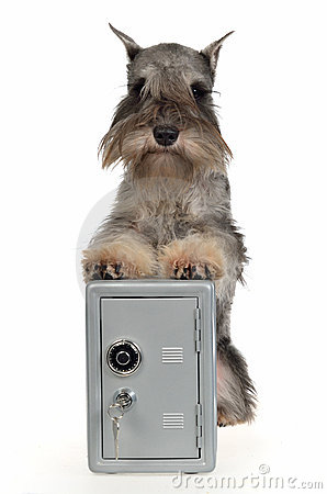 Guard dog with metallic safe