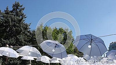 Guarda-chuvas com os bulbos no vento video estoque