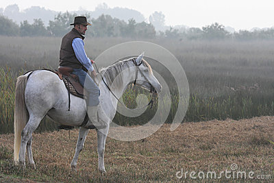 Guardian on Horse in morning light Editorial Photography