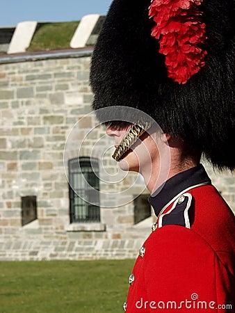 Free Guardsman With Citadel Royalty Free Stock Photo - 1234325