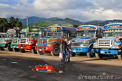 Guatemalan Chicken Busses Editorial Stock Image