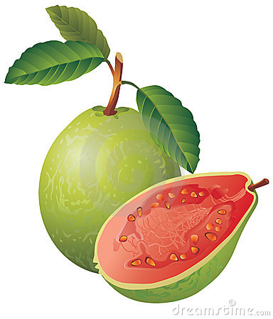 Free Guava Royalty Free Stock Photo - 3017435