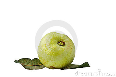 Guava fruit on the white background