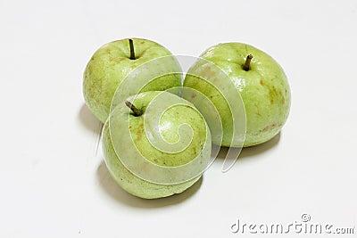Guava (tropical fruit)