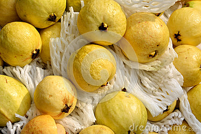 Guava w kolorze żółtym