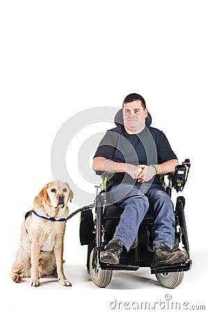 Free Guide Dog Stock Photos - 8433353