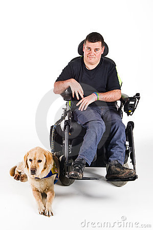 Free Guide Dog Stock Images - 8433354