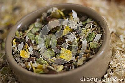 Guinea Pig Foodbowl
