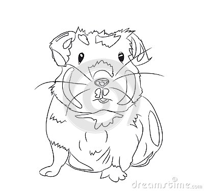 Free Guinea Pig, Lines, Vector Royalty Free Stock Photo - 121061045