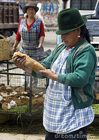 Guinea pigs - food market - Ecuador Editorial Stock Photo