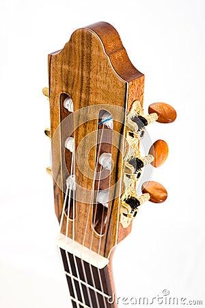 Free Guitar Neck Stock Image - 17171681
