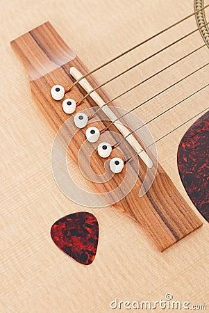 Guitar Pick And Guitar