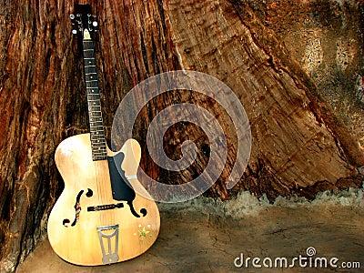 Guitar Woods