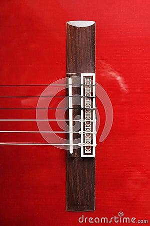 Guitare acoustique.