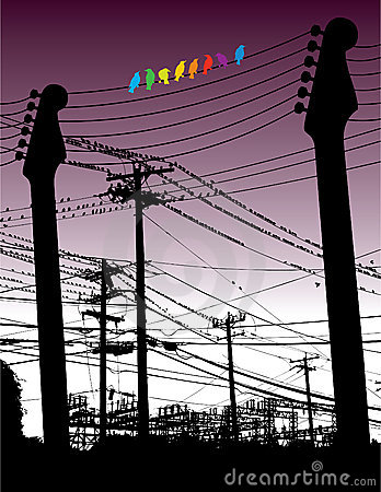 Guitars and wires with birds