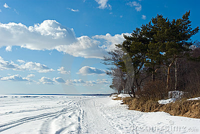 The Gulf of Finland coast in early spring