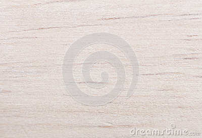 Gummibaum wood texture