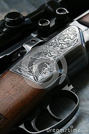Free Gun Royalty Free Stock Photos - 3054078