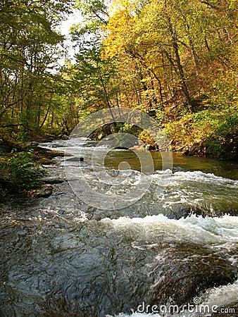 Gunpowder River-October