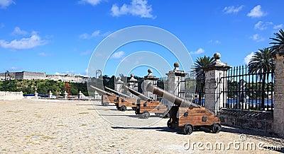 Guns of the castillo de la Real Fuerza.