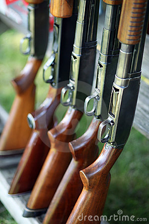 Free Guns In A Row Royalty Free Stock Photo - 4188585