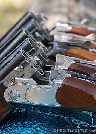 Free Guns In Line Stock Photography - 19321612