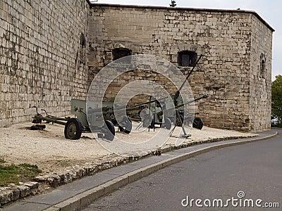 Guns of the Second World War