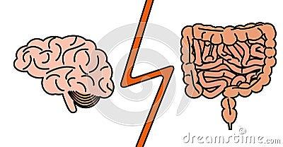 Gut versus brain concept Vector Illustration