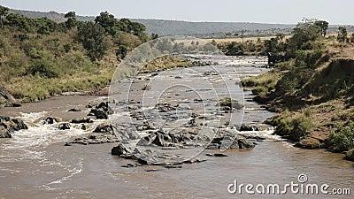 Gwałtowni na Mara rzece w masai Mara, Kenya zbiory