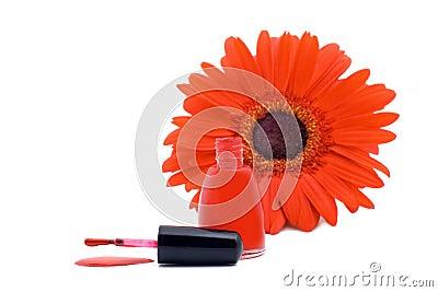Gwóźdź nalewający czerwieni lakier