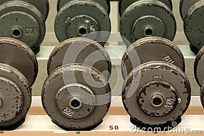 Gym Barbells