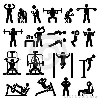 Gym Gymnasium Body Building Exercise Training