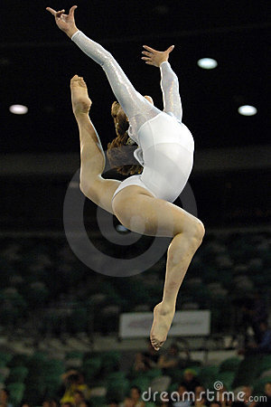 Free Gymnast 01 Stock Photos - 1753083