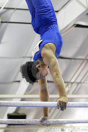 Free Gymnast On Parallel Bars Stock Photos - 103853