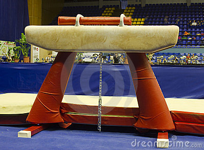 Gymnastic horse Editorial Stock Image