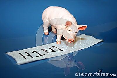H1N1 or swine flu virus
