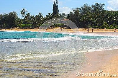 Haena beach surf