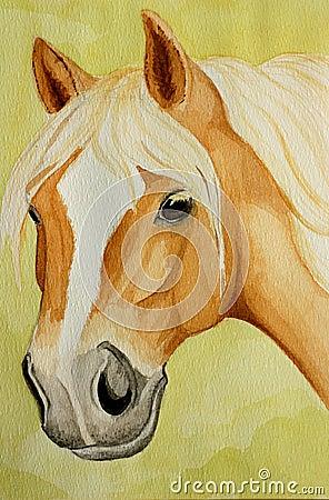 Haflinger horse painting