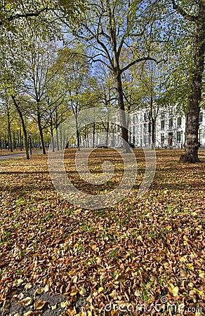 The Hague in Autumn
