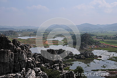 Haifeng wet land