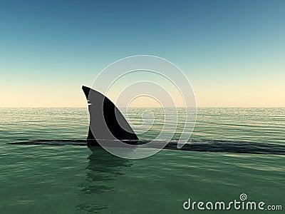 Haifisch