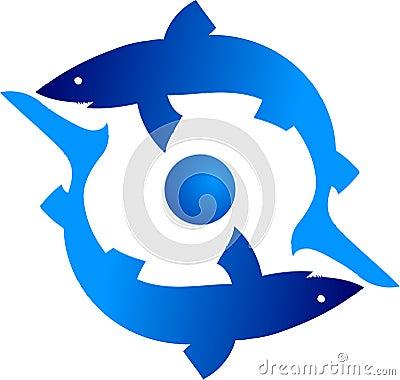 Haifisch zwei