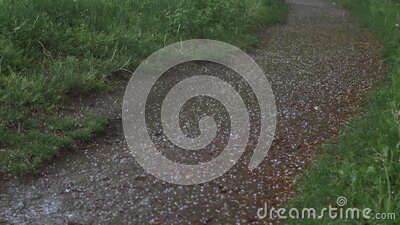 Hail Ice Falling on a Footpath stock video footage