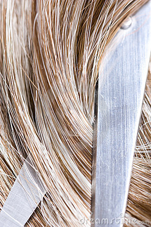 Free Hair Stock Photo - 11273040