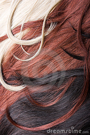 Free Hair Stock Photo - 11273050