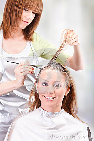Hair Coloring Stock Photo Image 43118095