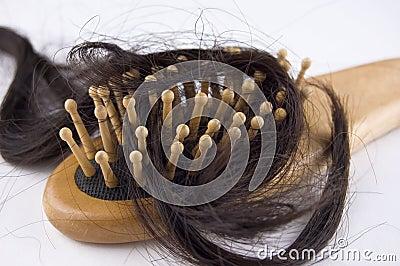 Royalty Free Stock Photo: Hair loss problem. Image: 3668645