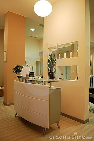 Free Hair Salon Stock Photography - 17332802