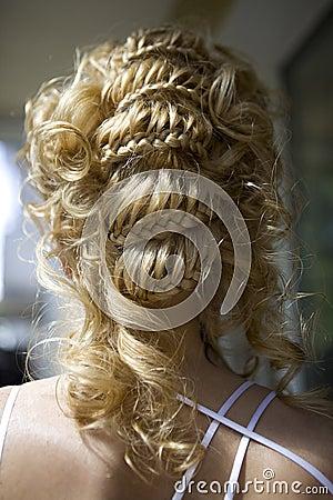 Free Hair Style Of Bride Stock Photos - 12693903