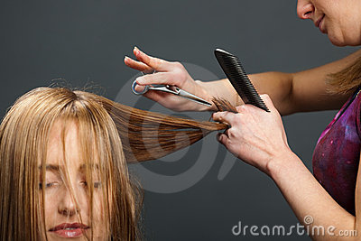 Hairdresser cutting customer s hair